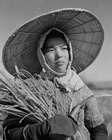 109 . WOMAN WITH CUT RICE